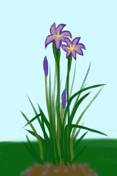 Plant Digital Drawing | kimjiwon | PENUP
