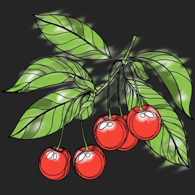 sweet cherries  | KarenC | Digital Drawing | PENUP