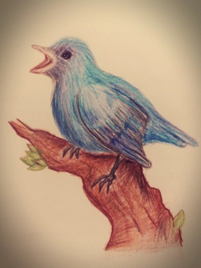 blue bird | Ishrah_khan.T | Digital Drawing | PENUP