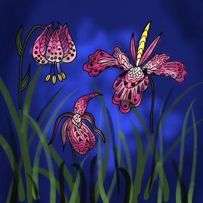 난초.. orchid..   mjyoo   Digital Drawing   PENUP