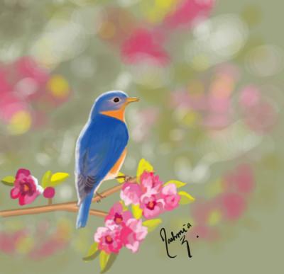 Pretty bird. | Mia | Digital Drawing | PENUP