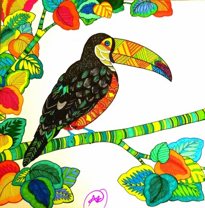toucan  | avictorias13 | Digital Drawing | PENUP
