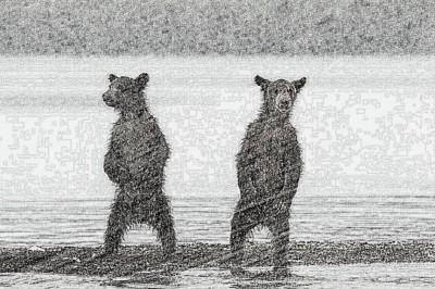 Bears | faris2018 | Digital Drawing | PENUP