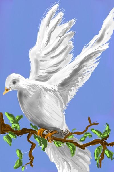 Pigeon | AntoineKhanji | Digital Drawing | PENUP