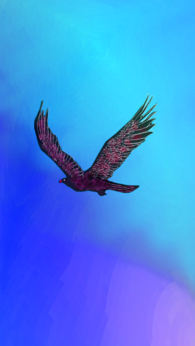 bird   qweensara   Digital Drawing   PENUP