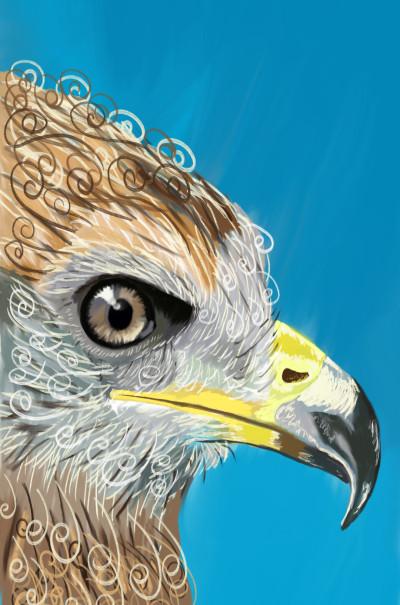 Eagle  | Zainab | Digital Drawing | PENUP