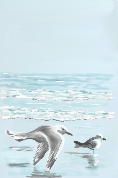 Seagulls | AntoineKhanji | Digital Drawing | PENUP