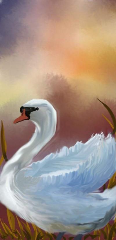 swan   Hanne   Digital Drawing   PENUP