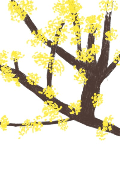 봄을 알리는 산수유  | min | Digital Drawing | PENUP
