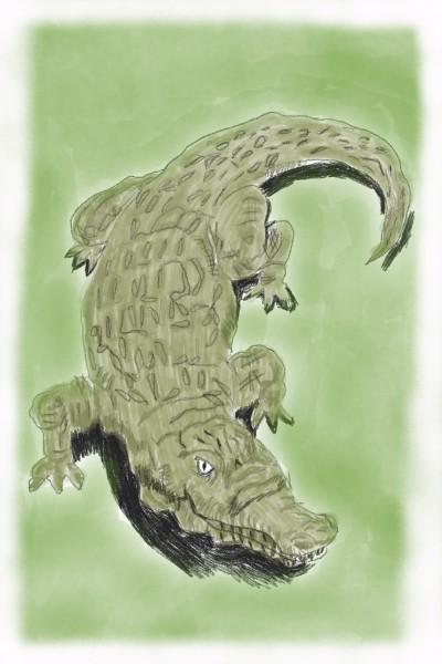 crocodile .  | Ivonne | Digital Drawing | PENUP