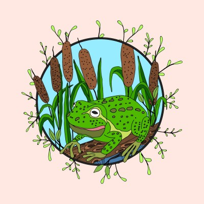 Frog & Cattails  | Trish | Digital Drawing | PENUP