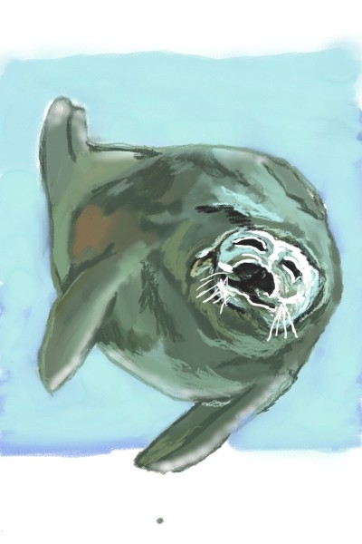 attempting a seal | Anevans2 | Digital Drawing | PENUP
