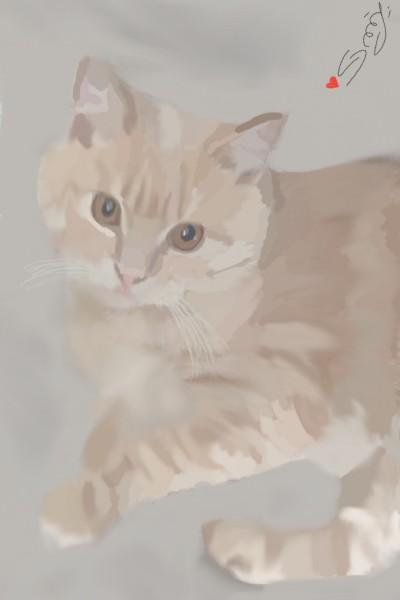 ♡my pretty kitty♡ | G.dream | Digital Drawing | PENUP