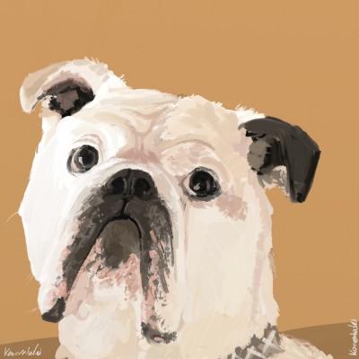 Buldog Marvin, jealous obviously ;)   Monty   Digital Drawing   PENUP