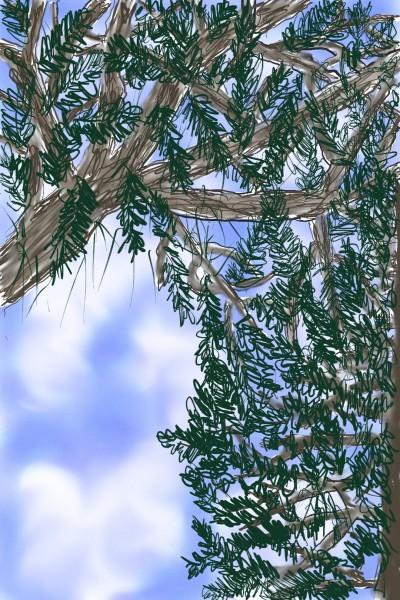 view through the trees   Rhonda   Digital Drawing   PENUP