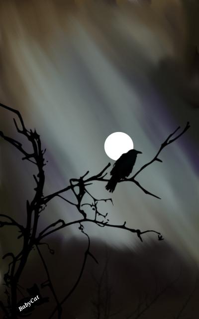 Moon Crow | Babycat5 | Digital Drawing | PENUP
