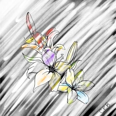 Ohio  | ChrisPBacon | Digital Drawing | PENUP