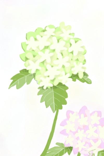 Live Drawing Digital Drawing | jinhee | PENUP