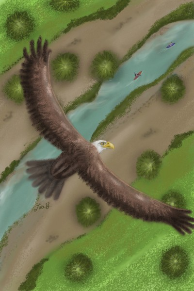 Eagle Eye View | LisaBme | Digital Drawing | PENUP