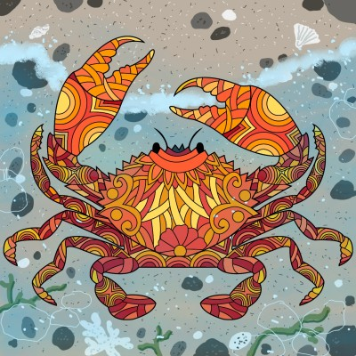 shore crab | Diana | Digital Drawing | PENUP