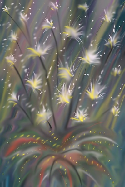 Night twinkles | Damirijana | Digital Drawing | PENUP