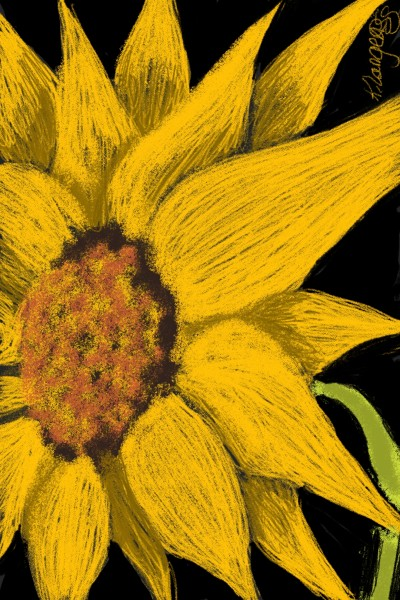 sunflower Doodle | _Katlyn_L | Digital Drawing | PENUP
