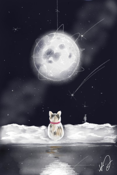 moon cat | seow0201 | Digital Drawing | PENUP