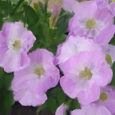 Pink Petunias | Charldia | Digital Drawing | PENUP