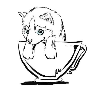 Tea Cup Husky | Grafixguru | Digital Drawing | PENUP