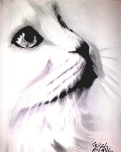Animal Digital Drawing | DiNa | PENUP