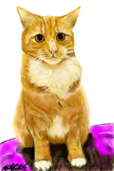 neice's kitty   mburdick   Digital Drawing   PENUP