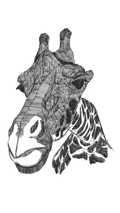 girrafe | panduaa | Digital Drawing | PENUP