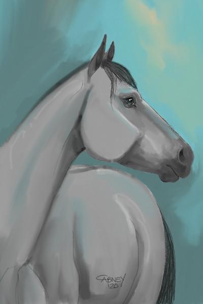 Blue Roan   shadowmare72   Digital Drawing   PENUP