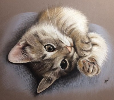 Chaton | toutfaire | Digital Drawing | PENUP