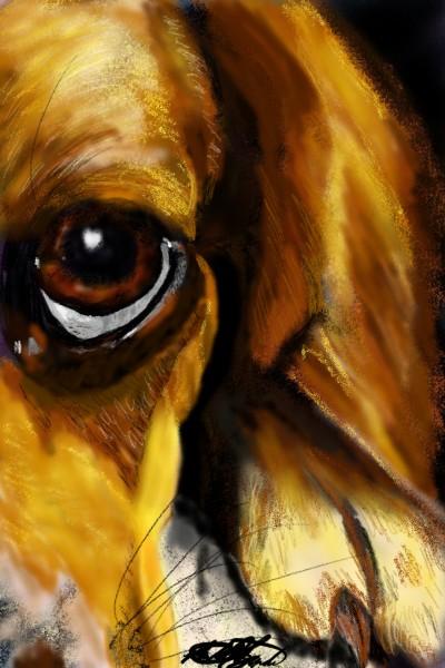 Izzy beagle's eye | mburdick | Digital Drawing | PENUP