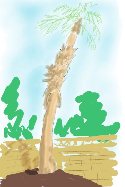 Palm tree in my back yard | mortaine | Digital Drawing | PENUP