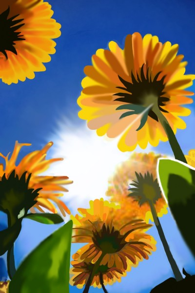 Sunflower | Rabbitee | Digital Drawing | PENUP