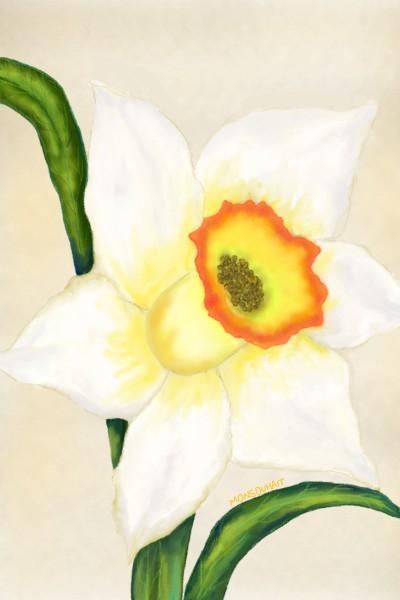 Daffodil | MonSouhait | Digital Drawing | PENUP