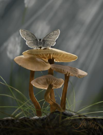 Mushrooms  | Kuas | Digital Drawing | PENUP