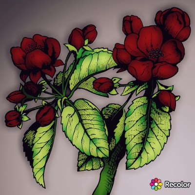 Plant Digital Drawing | con | PENUP