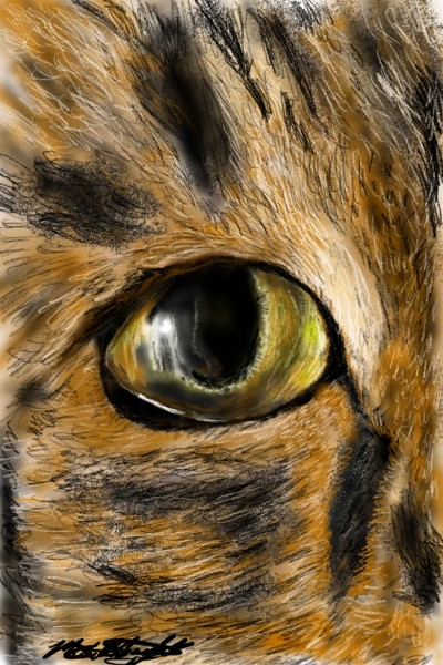 Chrissy Kitty | mburdick | Digital Drawing | PENUP