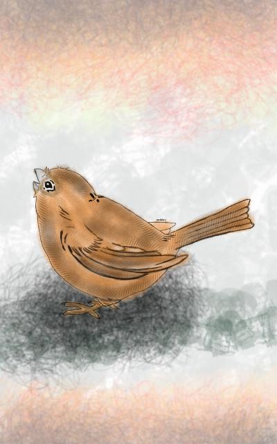 Bird | Andhra.Ghandi | Digital Drawing | PENUP