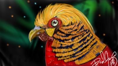 Chicken?  | DavidFavre | Digital Drawing | PENUP
