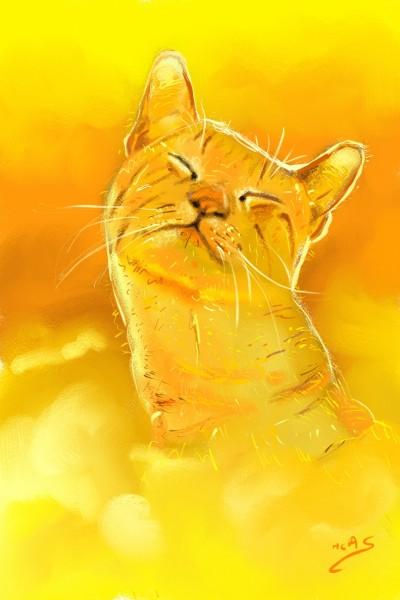 Gat en fons groc  | Carme | Digital Drawing | PENUP
