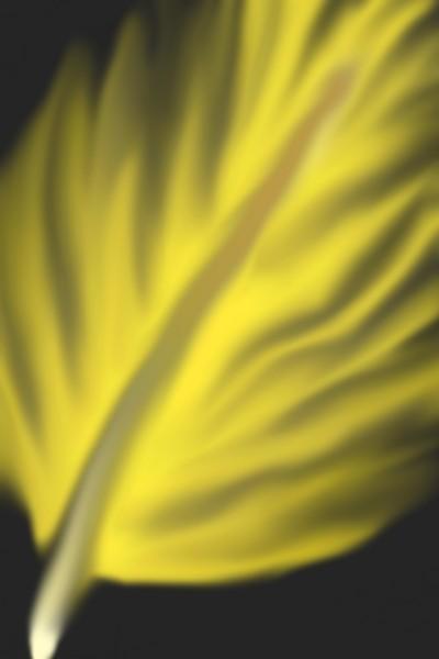 yellow | susmi | Digital Drawing | PENUP