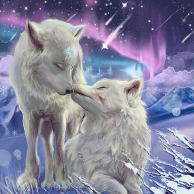 オオカミ | Gaycouple | Digital Drawing | PENUP