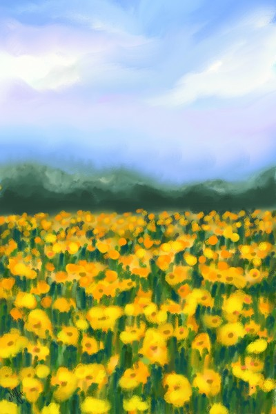 poppy field  | MonSouhait | Digital Drawing | PENUP