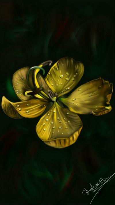 Wet beauty | Abex | Digital Drawing | PENUP
