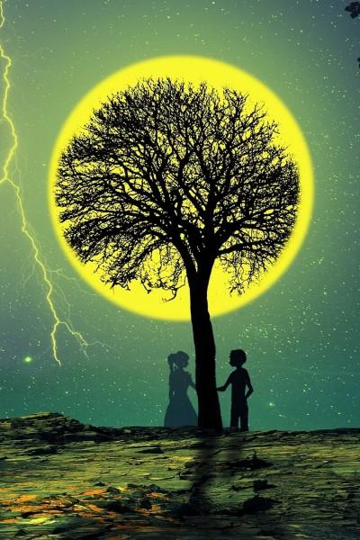 TREE ♡♡♡ | HANA | Digital Drawing | PENUP