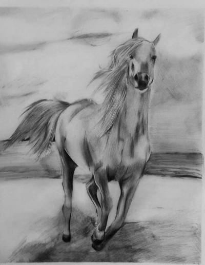 The Raging Horse | mahmood | Digital Drawing | PENUP